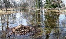 Vairākas Kurzemes upes izgājušas no krastiem, applūst palienes