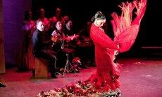 Ugunīgs dejas notikums - pasaulē atzīta flamenko izrāde Karmena