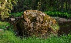 Spuņņu akmens, mežacūku vannas un stāvkrasti – dabas un izziņas taka 'Viesatas upesloki'