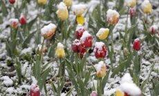 Pirmdien dažviet īslaicīgi snigs