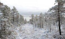Во вторник утром Латвия снова покроется снегом