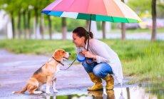 Nedēļas nogalē gaidāms mērens siltums un īslaicīgs lietus