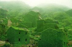 Сила природы: жадный лес проглотил заброшенный китайский городок
