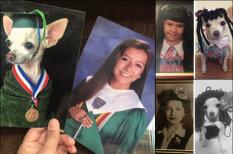 Дочь заменила семейные фото на фото собаки; мама заметила через две недели