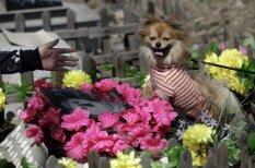 Latvieši nav vienīgie, kuri aizraujas ar kapu svētkiem