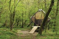 Namiņš tiem, kuriem meža vidū patīk baudīt romantiku