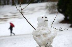 Sniegavīri, pie kuriem vēl ir jāpiestrādā