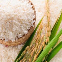 Jasmīnu rīsi