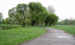 Этой осенью от холода умерло семеро человек: женщина замерзла прямо в парке