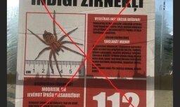 Viltus ziņa par indīgo zirnekli: Policija lems, vai sākt kriminālprocesu
