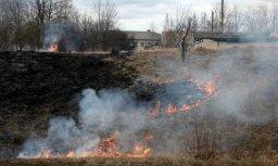 В минувшие сутки зарегистрировано 10 пожаров прошлогодней травы
