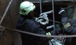 ФОТО: В Риге пожарные спасали чайку, застрявшую в шахте