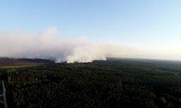 На тушение пожара под Талси брошены дополнительные силы: выгорело уже 715 га леса и болот
