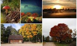 Zvārtes iezis un kolosāla varavīksne pār Stendi – 'Delfi' lasītāji iemūžina krāšņo Latvijas rudeni