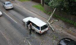 Ventspils ielā mašīnai virsū uzgāžas koks