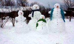 Maznaukšēnos no marta sniega uzvelta branga sniegavīru ģimenīte