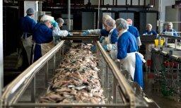 Вырос оборот рыбоконсервного производителя Karavela
