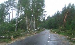 Vētras postījumi Zaļumos