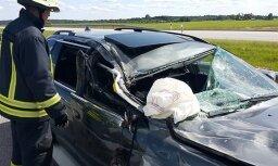 В Литве машина из Латвии столкнулась с грузовиком: погибла женщина