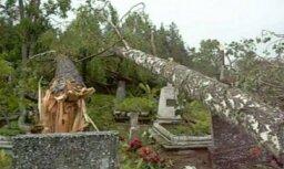 Vētras sekas Sventē un Madonā