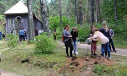 Foto: Amerikas latviešu jaunieši iestāda bērzu aleju Latvijas simtgadei