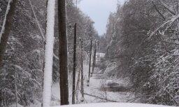 Снежный коллапс: у 3 000 клиентов Sadales tīkls перебои с электричеством