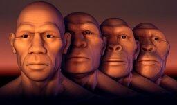 Опровергнута главная причина происхождения человека: Homo возник случайно