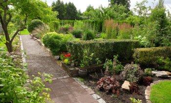 Самый красивый сад в Юрмале: в гостях у Инесе Кокаре