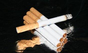 EP neatbalsta 'tievo' cigarešu aizliegumu; mentola cigaretes 'izskaudīs' no 2022.gada