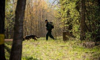 Reportāža: Latvijas un Baltkrievijas robežsargi banku 'laupītājiem' pa pēdām
