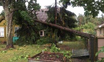Читательница об урагане в Саулкрасты: