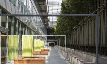 Uzņēmumi visā pasaulē savos birojos izvēlas aizvien 'zaļāku' dizainu