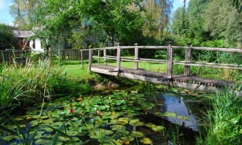 Māja pie dīķa: krāšņas un gaumīgas idejas ūdenstilpnes ierīkošanai