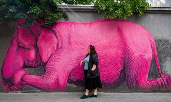 Rozā ziloņus meklējot: ideja aizraujošām brīvdienām Kauņā
