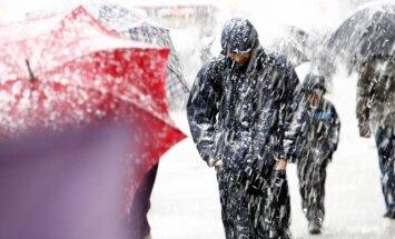 Синоптики: в четверг тоже ожидаются сильный ветер и осадки