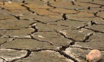 Šā gada klimatiskā parādība 'El Ninjo' ir spēcīgākā 65 gadu laikā
