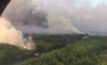 Mežu ugunsgrēks Černobiļas apkārtnē ir apslāpēts