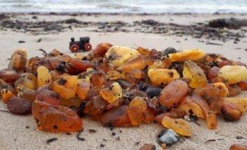 ФОТО: Читательница собрала на берегу моря в Павилосте два килограмма янтаря