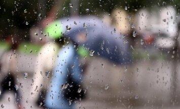 Синоптики: в понедельник ожидается теплая погода и дожди