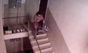 """ВИДЕО: Женщина ходит по подъезду и """"собирает"""" коврики для ног"""