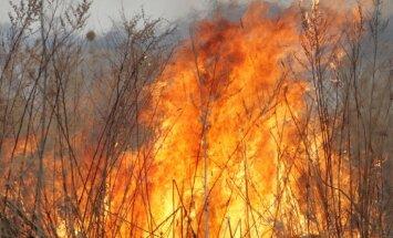 Pagājušā diennaktī dzēsti 67 kūlas ugunsgrēki