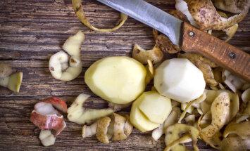 Нужно ли собирать картофельные очистки и шелуху для удобрений?