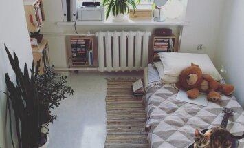 ФОТО. Как Юрита переехала в квартиру площадью 12 кв.м и сделала их своим домом