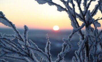 Piektdien Latvijas austrumos gaidāms pat -16 grādu sals