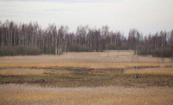 Piektdien nokrišņi Latvijā nav gaidāmi