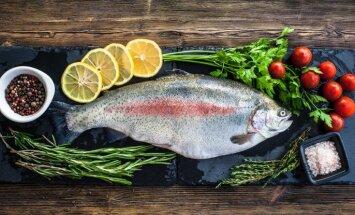 Мировые цены на лосося могут вырасти