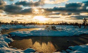 Foto: Ziemīgs un skaists saullēkts Ķemeru purvā