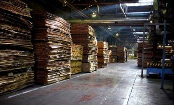 Pieaugumu apstrādes rūpniecībā turpina nodrošināt kokapstrāde, norāda FM