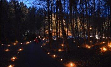 Skaņajā kalnā Ziemassvētkos taps svecīšu mežs