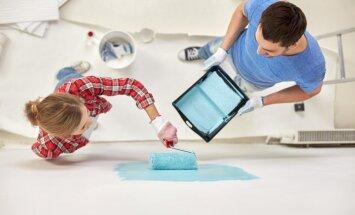 Когда лучше всего красить стены? Ответ может вас удивить!